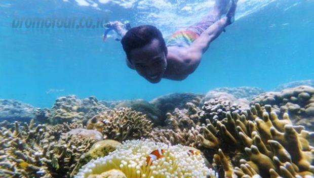 Snorkeling di Pulau Gili Ketapang Probolinggo