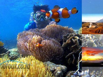 Paket Snorkeling Gili Ketapang dan Wisata Gunung Bromo 2 hari
